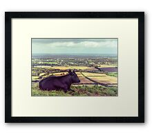 Daisy Enjoys the View from Truleigh Hill Framed Print