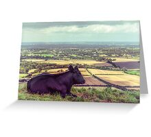 Daisy Enjoys the View from Truleigh Hill Greeting Card