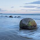 Moeraki Boulders _ New Zealand by Barbara Burkhardt