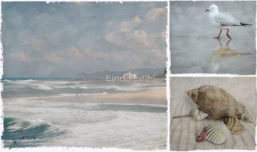 Beach Triptych 1 by Linda Lees