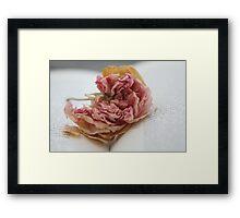Faded rose  Framed Print