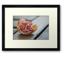 Faded rose III Framed Print