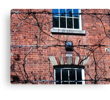 wire and branches Canvas Print