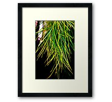 brush Framed Print