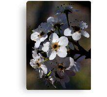 Artistic Blossoms Canvas Print