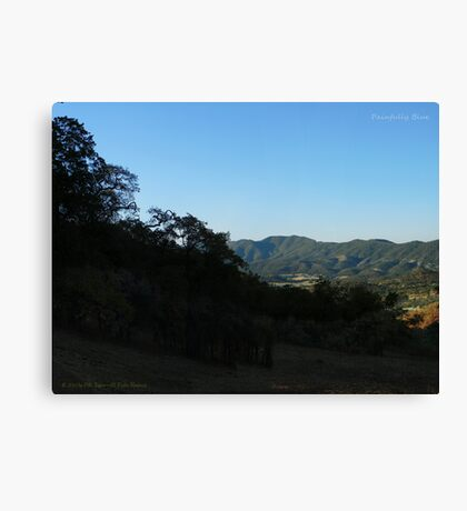 Painfully Blue Canvas Print