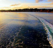 On The Wanachee Ferry. From Seattle To Paulsbo, Washington by trueblvr