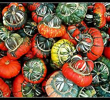 Turban gourds by rondo620