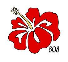 Hawaiian Islands Red Hibiscus 808 by Buckeyefiveo