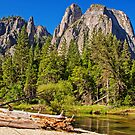 Cathedral Rocks Vista, Yosemite Valley, California, USA by TonyCrehan