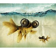 Lens eyed fish Photographic Print