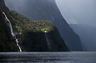 Milford Sound Weeps _ New Zealand by Barbara Burkhardt