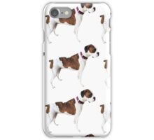 Asa Grey boxer dog iPhone Case/Skin