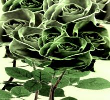 WILD IRISH ROSE - 051 Sticker