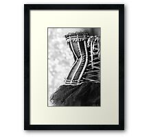 Ribbons and Lace Framed Print