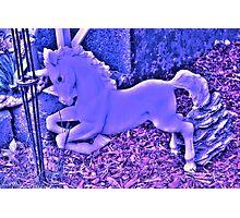 Unicorn Blue Photographic Print