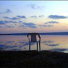 The relax Chair  by dedakota