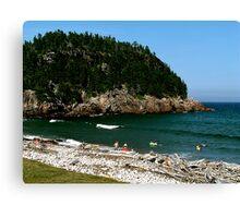 Swim at Black Beach ! Canvas Print