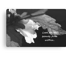 Look for the Beauty in All Things Canvas Print