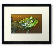 """Pluck your magic twanger, Froggy!"" Framed Print"