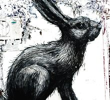 ROA Graffiti Artwork, Rabbit by GraffArt Tees