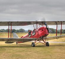 Tiger Moth G-ACDC by larry flewers