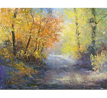 A Tranquil Trail Photographic Print