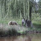 Under The Willow by Saraswati-she