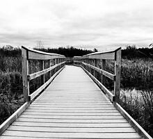 Silence Bridge by eurodak
