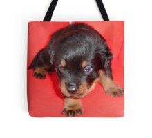 Young Rottweiler Puppy On A Red Background Tote Bag