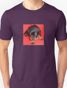 Young Rottweiler Puppy On A Red Background Unisex T-Shirt