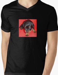 Young Rottweiler Puppy On A Red Background Mens V-Neck T-Shirt