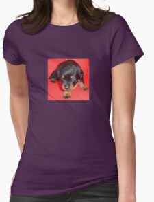 Young Rottweiler Puppy On A Red Background Womens Fitted T-Shirt