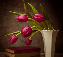 Love Of Tulips by Julie Begg