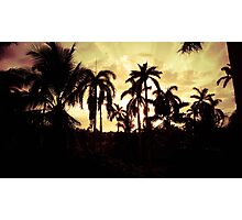 Jungle City Photographic Print
