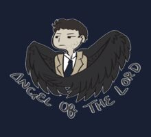 Angel of the Lord? by heycassie
