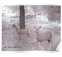 A Doe and Her Fawn Poster