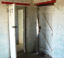 Doors by Joan Wild