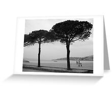 Ste-Maxime, Provence Greeting Card