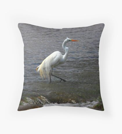 Another Step Throw Pillow