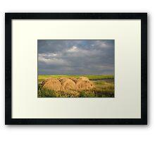 Making Hay in the Prairies, Canada Framed Print