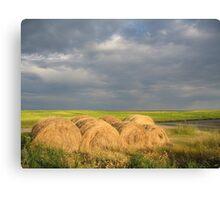 Making Hay in the Prairies, Canada Canvas Print