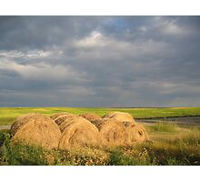 Making Hay in the Prairies, Canada Photographic Print