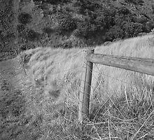 Flinders Fence by Lauren Eagle