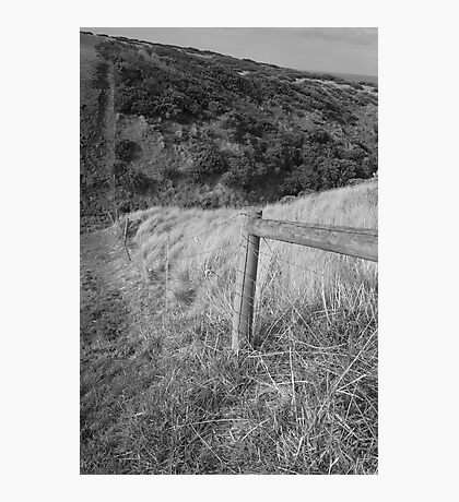 Flinders Fence Photographic Print