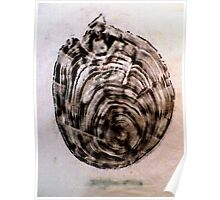 Fossil IV - Woodcut Print Poster