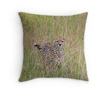 Cheetah in high grass 3 Throw Pillow