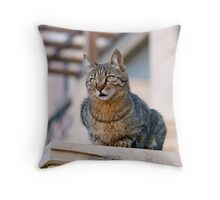 Minky of Aqaba Throw Pillow