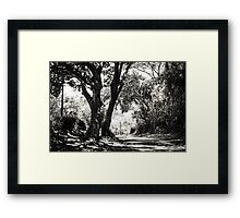 One Lovely Day Framed Print