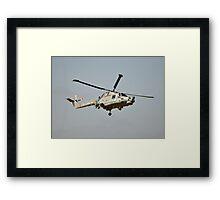 Lynx ZD565 Framed Print